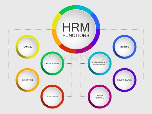 phần mềm quản lý nhân sự online
