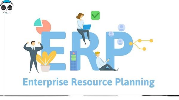 lợi ích thiết kế web app quản lý doanh nghiệp ERP
