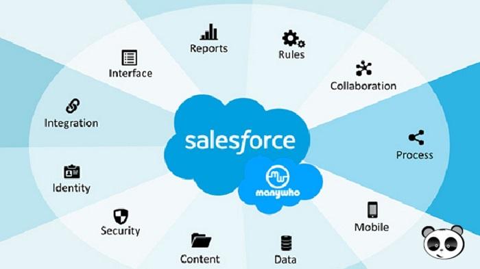 hướng dẫn sử dụng salesforce
