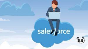 sales force là gì