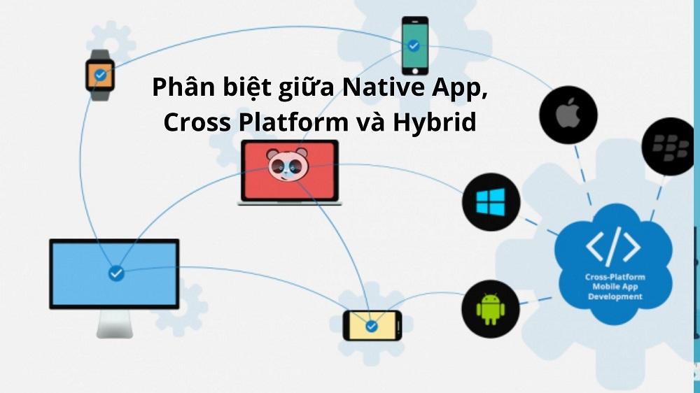 native code là gì