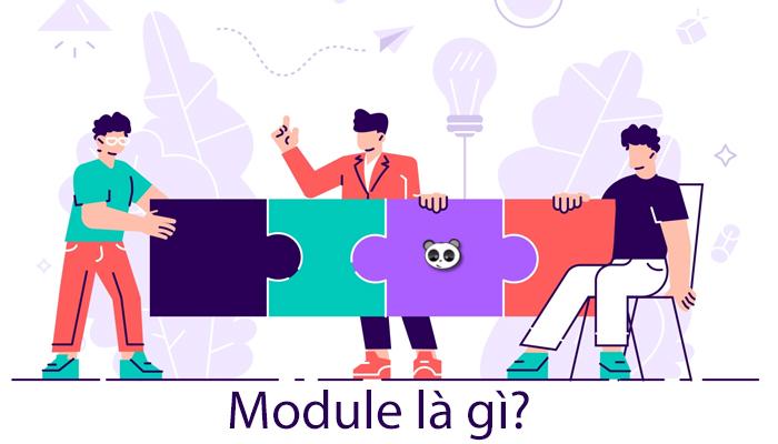 Module là gì? Khái niệm thuật ngữ module trong các lĩnh vực?