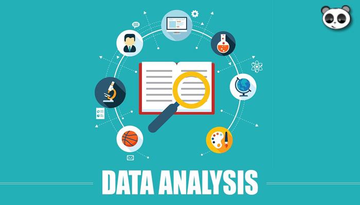 Data analyst là gì? Tầm quan trọng của phân tích dữ liệu đối với doanh nghiệp