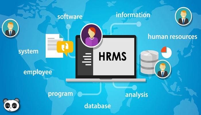 Đơn gian hóa việc tính lương với phần mềm HRM