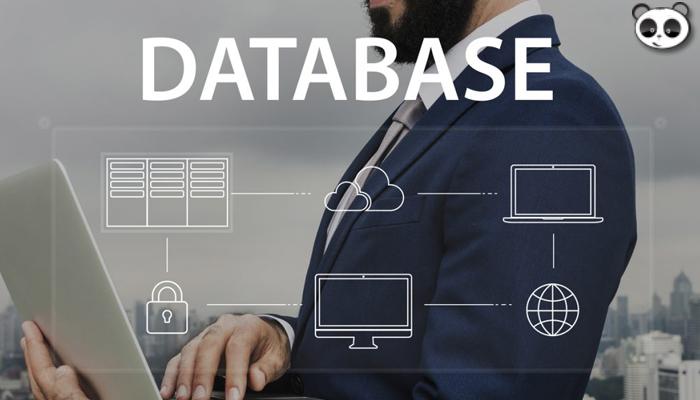 Tầm quan trọng của cơ sở dữ liệu trong lập trình phần mềm